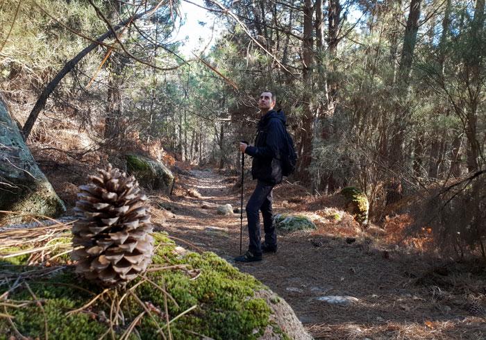 Paisaje otoñal en la senda entre La Alberca y Herguijuela de la Sierra