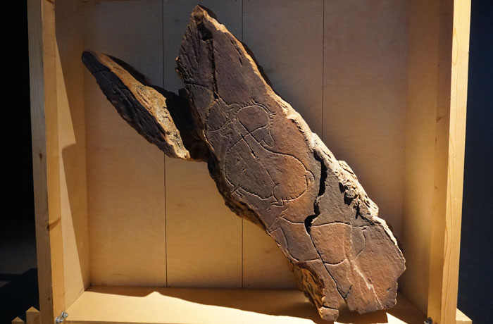 Réplica de uno de los grabados rupestres en el Museu do Côa